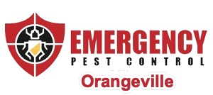 "target over cockroach and text that reads ""Emergency Pest Control Orangeville"""