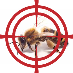 pest control targeting bees