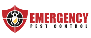 emergency pest control