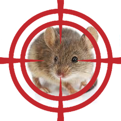 pest control targeting rodent