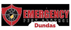 emergency pest control dundas