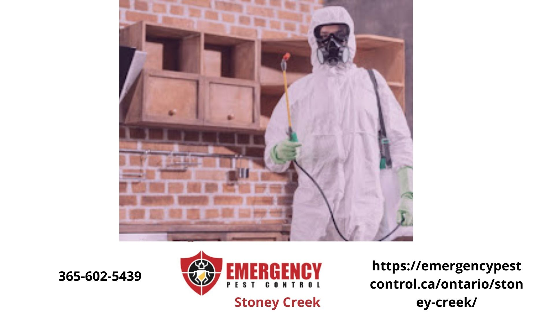 exterminator in full protective clothing